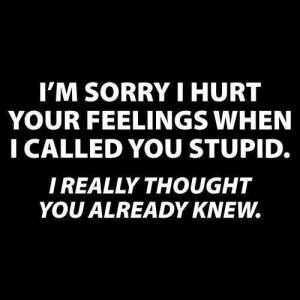 called-_you_stupid-300x300